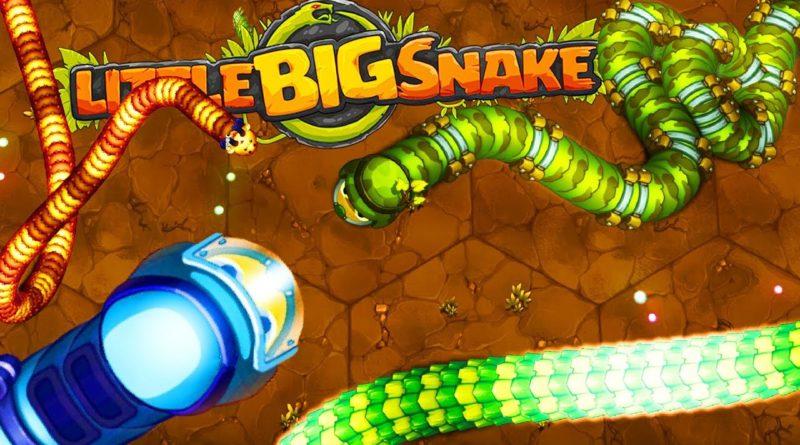 Dokážete být nejlepší v Little Big Snake?